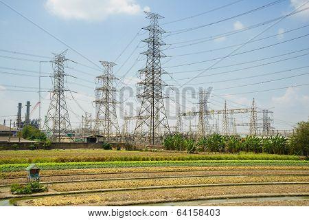 High Voltage Station And Vegetable Garden