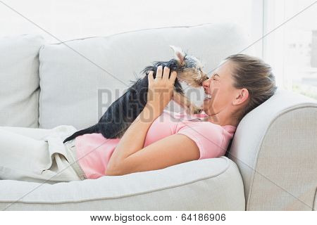 Happy woman playing with her yorkshire terrier on the couch at home in the living room