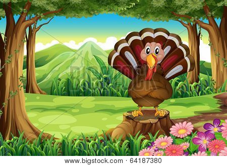 Illustration of a forest with a turkey