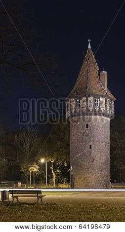 Medieval watchtower (old castle)