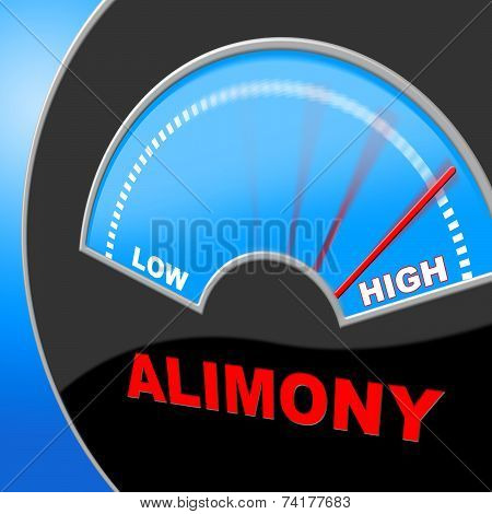 Alimony High Indicating Over The Odds And Excessive Support poster
