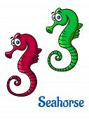 Cute little cartoon seahorses in red and green in side profile with curly tails, vector illustration isolated on white poster