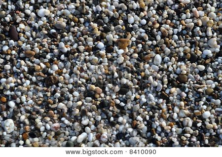 beautiful wet varicoloured white black brown stone as a background