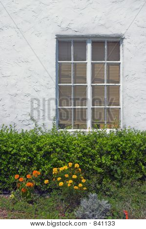 Window on white wall with flowers