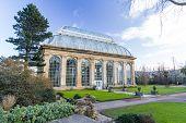 The Palm House at Edinburgh Royal Botanical Garden poster