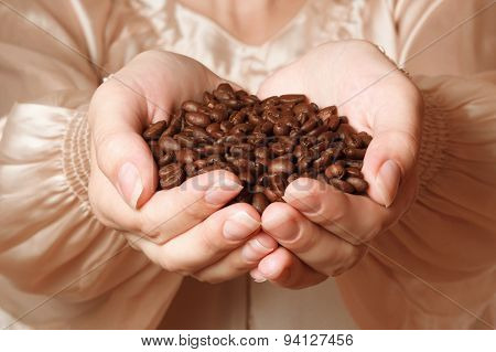 Coffee Beans In Female Hands