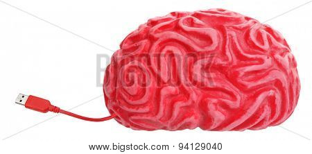 Brain with USB connection