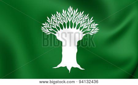 Flag Of The Wesel Kreis, Germany.