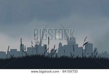 Grey Saint Louis Sunset