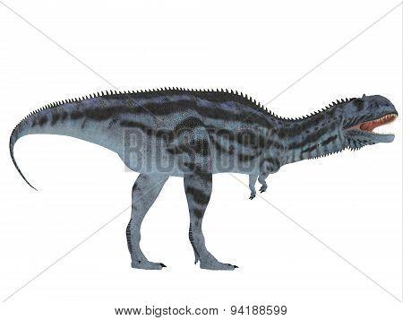 Majungasaurus Side Profile