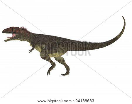 Mapusaurus Side Profile