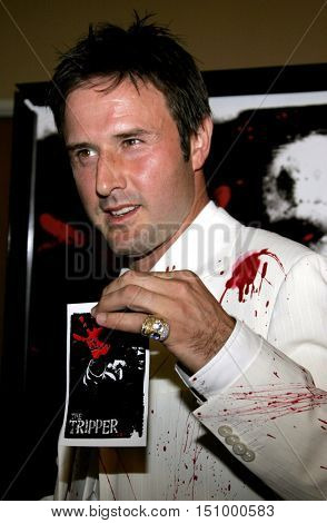 David Arquette at the Los Angeles premiere of 'The Tripper' held at the Mann's Chinese 6 in Hollywood, USA on October 13, 2006.