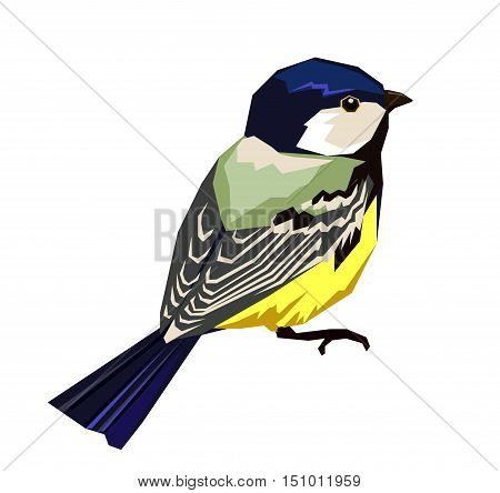 Great tit vector illustration, bird set vector .Great tit bird