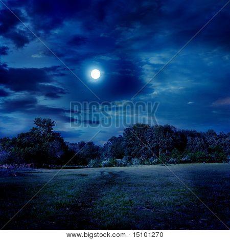 Mondschein-Landschaft