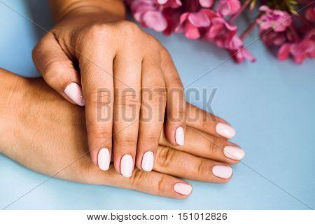 Beautiful Woman's Nails With Beautiful Pink Manicure