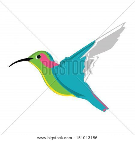 Small Exotic Hummingbird