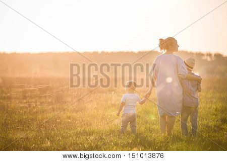 Beautiful young woman with two boys on the daisy meadow on a sunny day. Happy family on summer sunset. Kid boy toddler and mom. Mum with baby and kid. Family and lifestyle concept