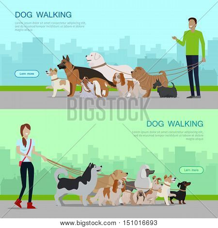Professional dog walking banners set. Young man and woman walking with group of different breeds dogs on urban background. Dog service. Vector illustration in flat. Cartoon dog character, pet animal