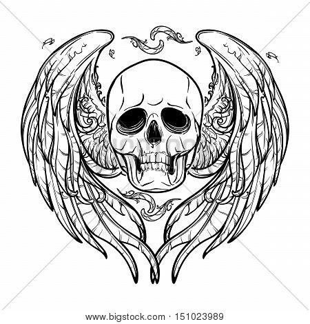 Human skull with feathered wings behind isolated on white background. Symbolic meaning. Halloween concept art. Tattoo design. Intricate hand drawing. EPS10 Vector illustration.