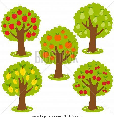 Vector set of fruit orchard trees: Apple tree, Pear tree, orange tree, lemon tree and cherry tree.
