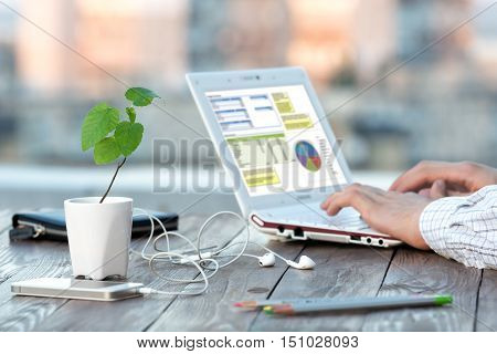 Businessman working at laptop out of office typing keyboard of Computer green Flower sunlight background brown wood desk electronic devices accessories Focus on plant leaves