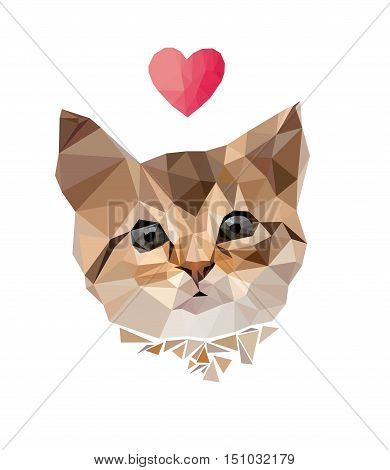 cat low poly, vector, illustration, cat vector illustration