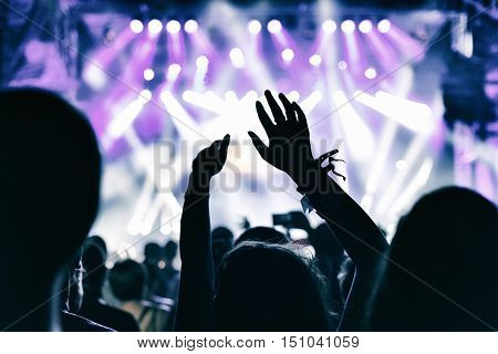 Concert Crowd Applauding