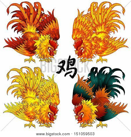 Set a fighting rooster a symbol of 2017 according to the Chinese calendar in four options of color. Red, orange, fiery, yellow, gold and black birds. And hieroglyph cock. A vector illustration, isolated on white.