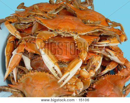 Blue Crab Feast