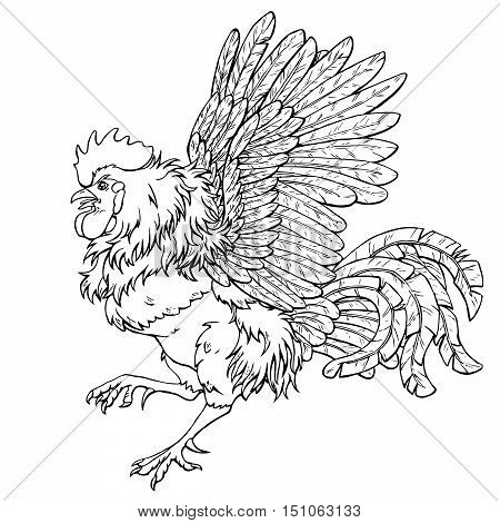Pugnacious rooster black contour line on white background. Fiery cock, chicken a symbol of the Chinese new year 2017. Vector illustration. Vintage.