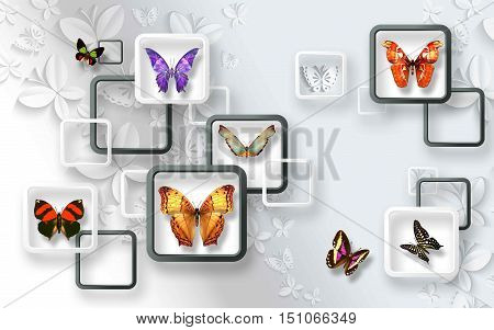 3d abstract art with colorful butterfly white background