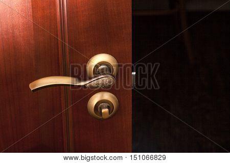 modern style door handle on natural wooden door