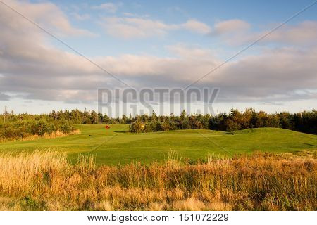 Brightly colored golf green viewed from the hazard.