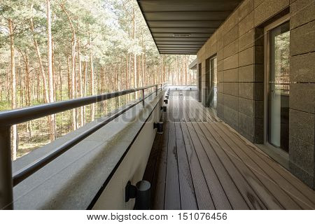 Balcony With Forest View