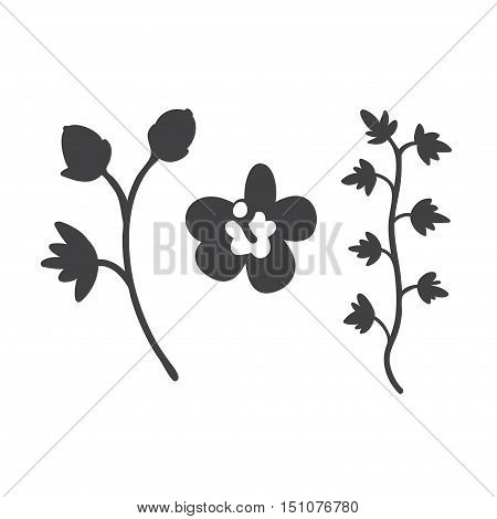 Vector black flat icon set. Sakura flower vine and button silhouette. Flat black flowers icons for polygraphy web design logo app UI.