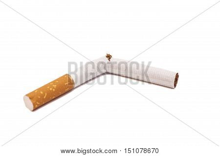 Broken cigarette on a white background .