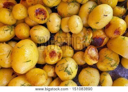 Round uncut fried yellow delicious French potatoes.