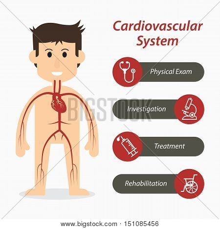 Cardiovascular system and medical line icon .