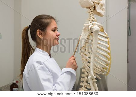 Doctor And Skeleton
