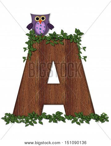 Alphabet Deep Woods Owl A