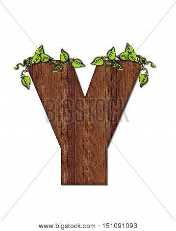 Alphabet Woodsy Y