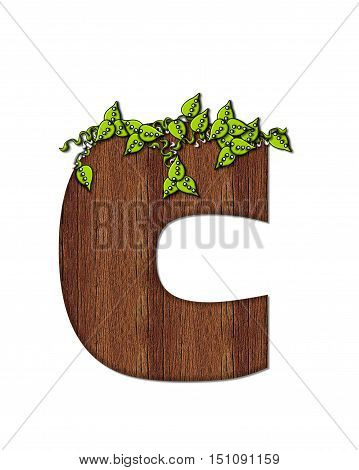 Alphabet Woodsy C