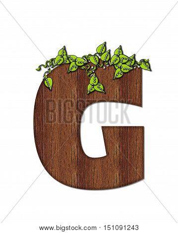 Alphabet Woodsy G