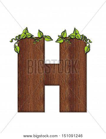 Alphabet Woodsy H