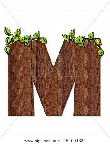 Alphabet Woodsy M