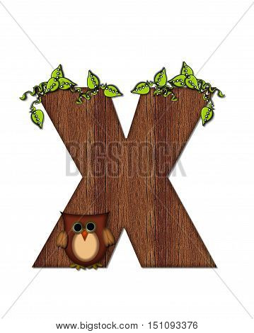 Alphabet Woodsy Owl X
