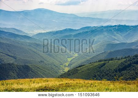 Carpathian mountain range with forest in valley