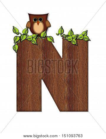 Alphabet Woodsy Owl N