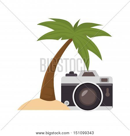 photographic camera device and palm tree icon over white background. vector illustration