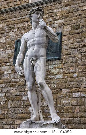 The David of Michelangelo in the Piazza della Signoria Florence